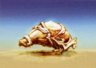 Spiran Hippo